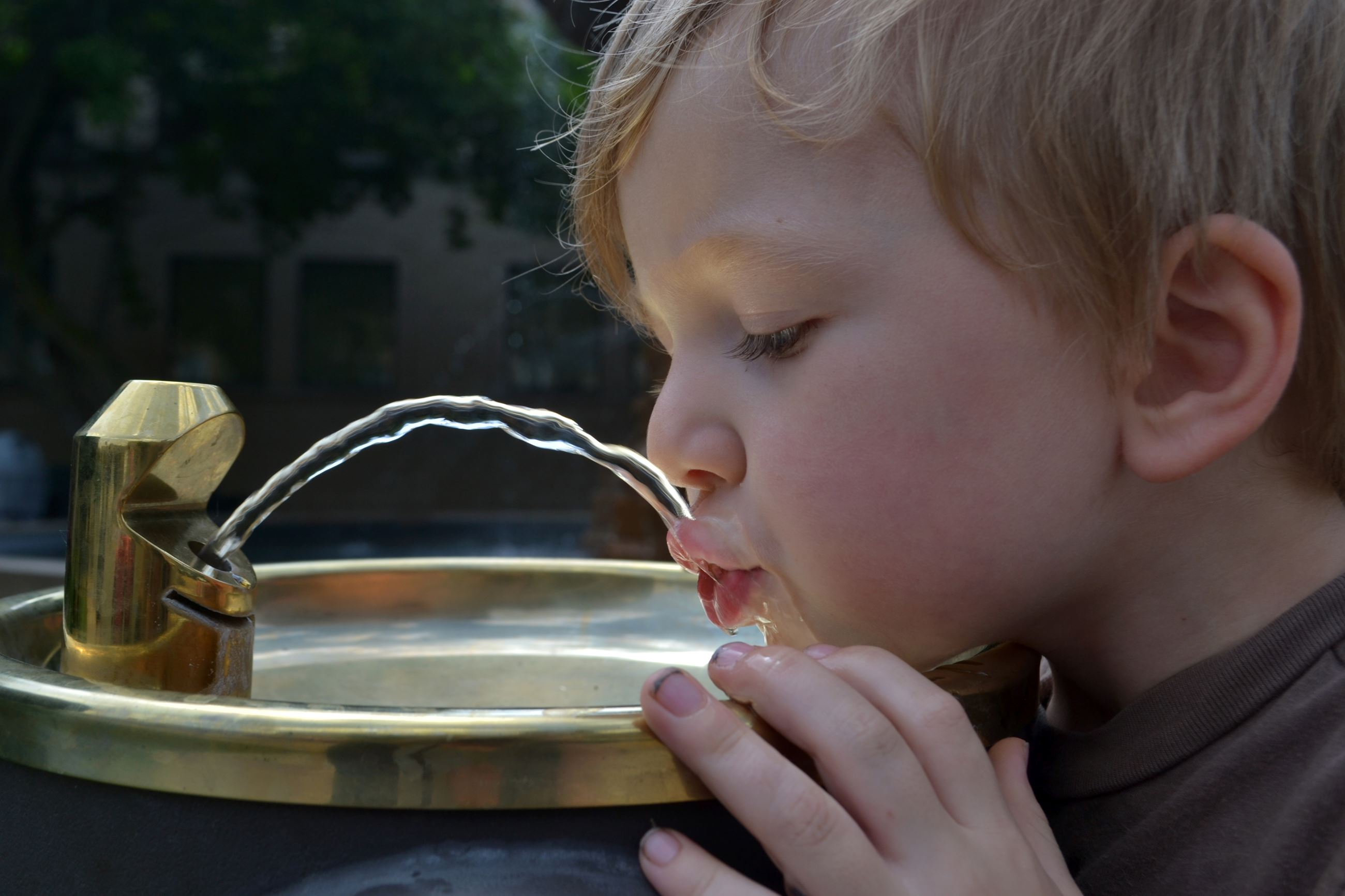 toddler drinking from water fountain