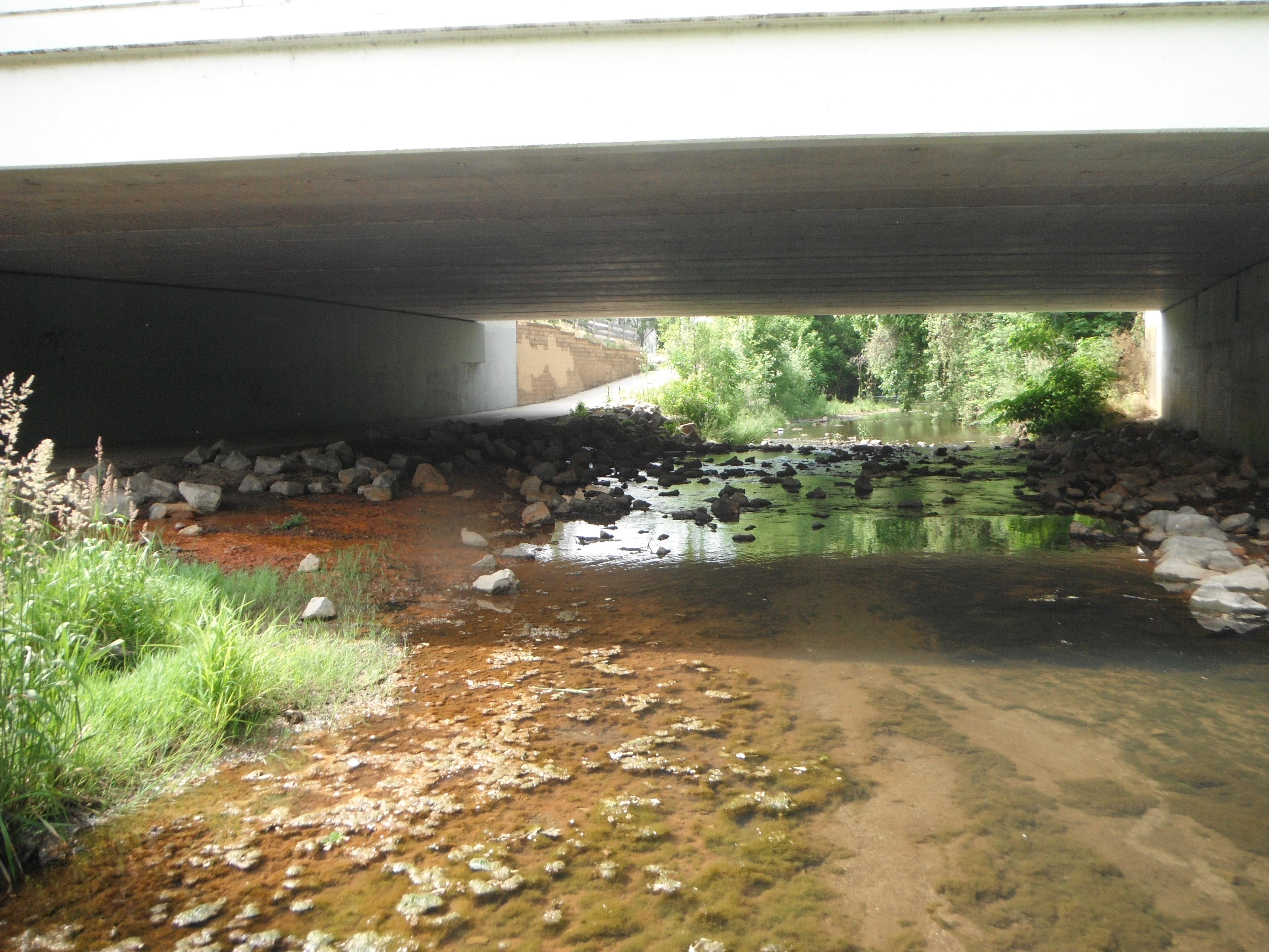 Stream under the bridge